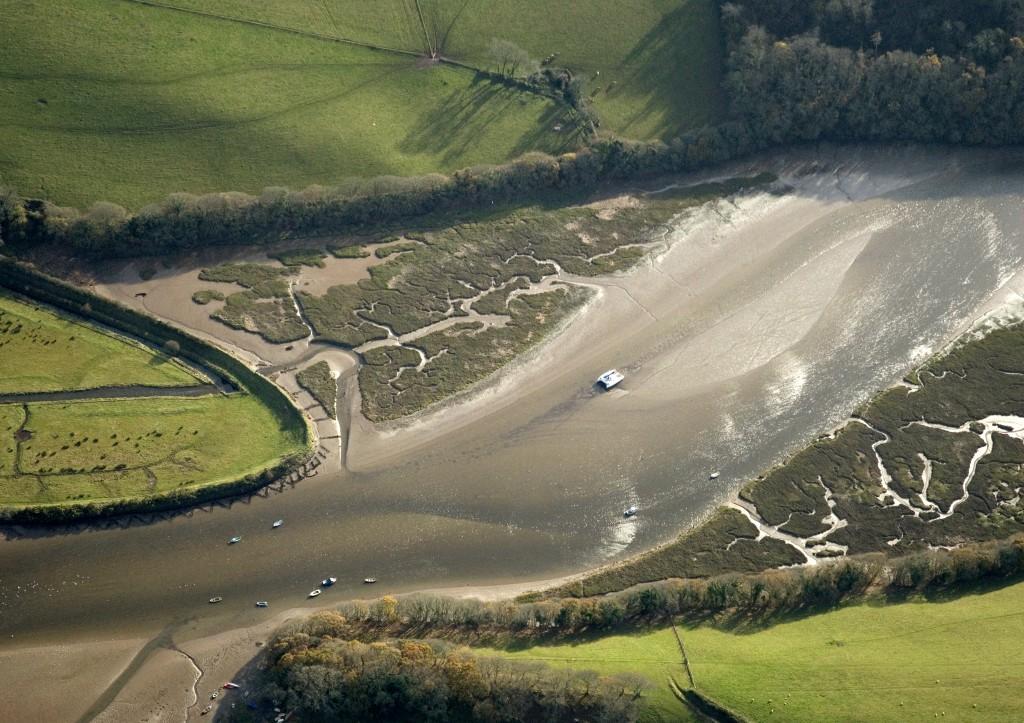 Salt marsh on seaward margin of South Efford freshwater grazing marsh